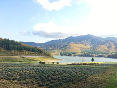 南富良野 かなやま湖 紅葉