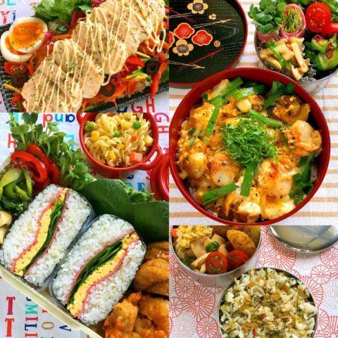 今週のお弁当(5月7日〜5月10日)